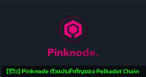 [รีวิว] Pinknode ตัวแปรสำคัญของ Polkadot Chain